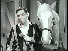 Mister Ed S5 | Ed the Godfather
