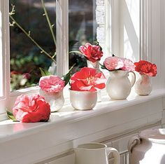 Top 10 Window Boxes with Flower Decorations