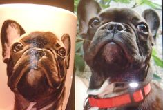 hand painted customized mug Frenchie French Bulldog, Hand Painted, Mugs, Animals, Animales, Animaux, French Bulldog Shedding, Tumblers, Bulldog Frances