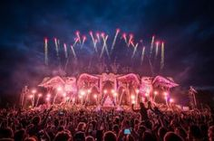 Competition: Win a pair of tickets to this year's Electric Daisy Carnival > Music Festivals > Music | Purple Revolver