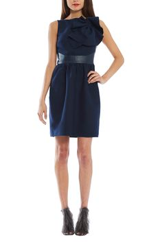 Asheville Cinched Dress from RAOUL