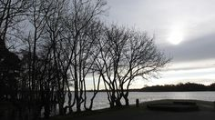 A Passion For Cards: Lough Ramor, Cavan