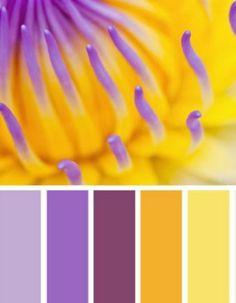 farbgestaltung wohnideen lila gelb