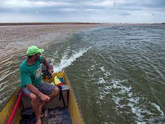Águas de Pontal: Lama no Rio Doce: desastre faz 7 meses no Dia do M...