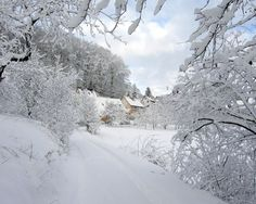 Image detail for -Christmas Snow Bulgaria - HD Wallpapers Widescreen - 1280x1024
