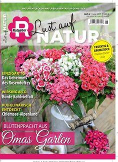 Lovely Bl tenpracht aus Omas Garten Jetzt in Lust auf Natur Pflanzen Garten Blumen