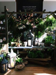 oh i love this ❖❣❖✿ღ✿ ॐ ☀️☀️☀️ ✿⊱✦★ ♥ ♡༺✿ ☾♡ ♥ ♫ La-la-la Bonne vie ♪ ♥❀ ♢♦ ♡ ❊ ** Have a Nice Day! ** ❊ ღ‿ ❀♥ ~ Sun Sep 2015 ~ ~ ❤♡༻ ☆༺❀ . Flower Shop Interiors, Tree Shop, Flower Studio, Garden Shop, Seasonal Flowers, Store Displays, Retail Design, Decoration, Beautiful