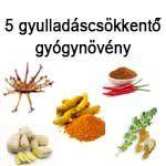 5 gyulladáscsökkentő gyógynövény Green Beans, Vegetables, Food, Veggies, Veggie Food, Meals, Vegetable Recipes, Green Bean, Yemek