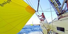 $69 -- Learn to Sail on Sydney Harbour, 54% Off | Travelzoo