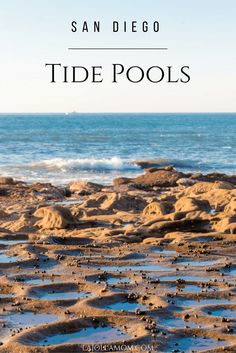 A list of the best tide pools in San Diego, a fun free thing to do outside with kids and without in winter. via @lajollamom