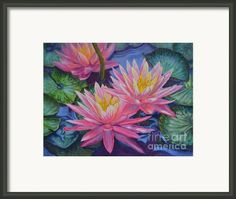 Framing suggestion for 'Water Lilies '1 Framed Print By Fiona Craig (the FAA watermark does NOT appear on the actual print) #art #prints #decor #flowers
