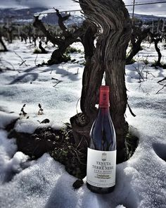 The power of 130 years old vines in a bottle... - Weinkrake #mywinemoment