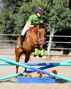"""""""Here's how I tell people to practice finding their distances. When you are just cantering…"""" - Rob Gage"""