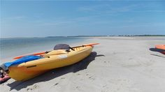 Kayaks at sandbar at low tide in front of house. Barnstable, Cape Cod vacation rental on WeNeedaVacation.com ID 3993