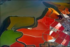 If you ever fly over San Francisco Bay, be sure to peer out of the window to catch a glimpse of one of the world's most incredibly coloured landscapes - the salt evaporation ponds operated by Cargill, Inc.