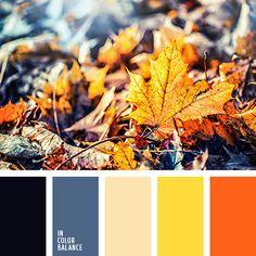 бежевый, джинсовый синий, насыщенный синий, оранжевый, осеннее сочетание цветов, осенние цвета, почти черный цвет, серо-синий цвет, темно-синий, темно-синий цвет, цвета осени, яркий желтый, яркий оранжевый.