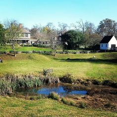 An autumn view of the pasture behind the Robert Carter house. This is one of my favorite views in CW. You can really picture the scene as if you were there in the 18th century.  #colonialwilliamsburg #virginia #thedogstreetpatriot #loveva #18thcentury #autumn #robertcarter #pasture #pond by the_dog_street_patriot