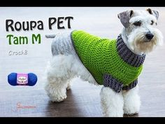 Tutorial Jersey Para Perro Crochet o Ganchillo - YouTube