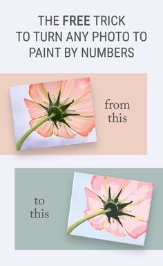 Remember my paint by numbers pillows? When I made those many of you wanted to know how to turn a photo into paint by numbers. I used Photoshop and Illustrator for that, which worked fine, but most of you probably