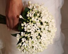 stunning white bouquet of bouvardia. Green And White Wedding Flowers, White Wedding Bouquets, Bride Bouquets, Orange Flowers, Bridesmaid Bouquet, Floral Wedding, Sunflower Bouquets, Floral Bouquets, Stephanotis Bouquet