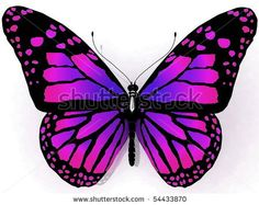Stock Images similar to ID 124483864 - pink violet butterfly ...