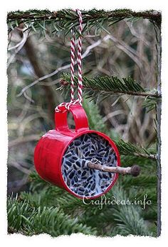 Winter Craft Projects - Nature Crafts - Winter Food Cakes for the Birds - Great idea for a Girl Scout camping activity craft!