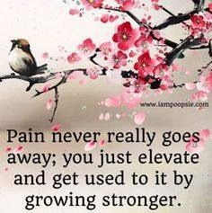Pain never really goes away; you just elevate and get used to it.   Chronic pain
