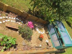 l'enclos de Mya ??? Us Images, Free Images, Diy Jardim, More Photos, Tortoise, Aquarium, Awesome, Plants, Outdoor