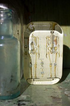 Rectangle Skeletons Paperweight would fit on one of our shelves perfectly!