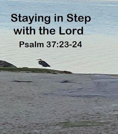 GOD Morning from Trinity, TX Today is Tuesday 10-19-2021 Day 292 in the 2021 Journey Make It A Great Day, Everyday! Staying in Step with the Lord Today's Scripture: Psalm 37:23-24 (NKJV) The steps of a good man are ordered by the Lord, And He delights in his way. Though he fall, he shall not be utterly cast down; For the Lord upholds him with His hand.