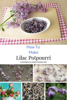 Learn how to make lilac potpourri using flowers from your own garden. Also learn how to dry the flowers, refresh the scent and make the potpourri last. How To Make Potpourri, Homemade Potpourri, Potpourri Recipes, Lilac Flowers, Dried Flowers, Lilac Pruning, Vanilla Essential Oil, Essential Oils, Scented Oils