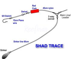 Normal SHAD trace - ULTIMATE ANGLING - the Ultimate SA Fishing website