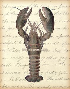 Coastal Decor Lobster Print by MakingHappy on Etsy