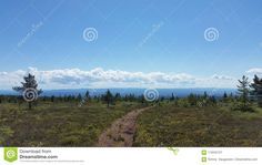 Blue Sky And A Nice Landscape, On Rondanestien Stock Image - Image of hedmarksvidda, norway: 115242127 Sky Walk, Cool Landscapes, Sunny Days, Norway, Mountains, Nice, Nature, Summer, Travel
