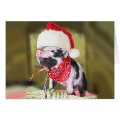 Pig santa claus - christmas pig - piglet card - Xmascards ChristmasEve Christmas Eve Christmas merry xmas family holy kids gifts holidays Santa cards