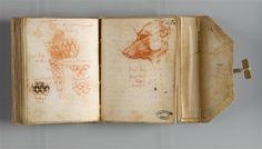 Leonardo da Vinci, 1494-1497