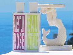 Paestum Rose Eau De Toilette By Eau D'Italie   Perfume - AHAlife.com