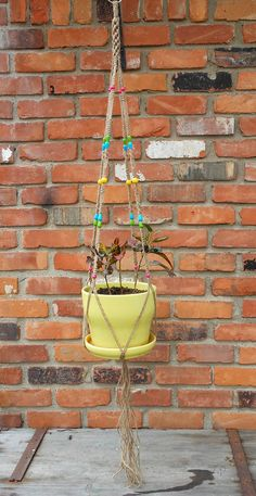 colorful macrame plant hanger