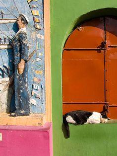 (via Cat's snooze. Argentina. La Boca - a photo on Flickriver)