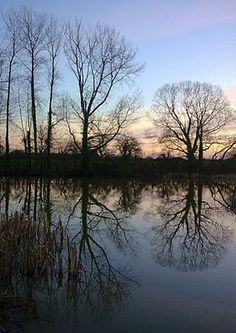 The lake view at St Cuthman's retreat centre, West Sussex