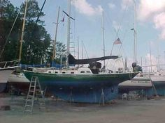 Boats for Sale Sailboats For Sale, Steel Cutter, Used Boat For Sale, Used Boats, Cement, Sailing Ships, Holland, United States, World