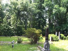 Fair Forest Cemetery Union County South Carolina.  My 2nd, 3rd, 4th, and 5th great grandparents are buried here.