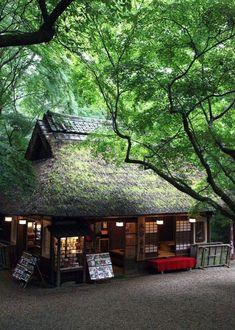 Casa di Tè, parco di Nara,  Giappone