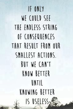 """""""If only we could see the endless string of consequences that result from our smallest actions.  But we can't know better until knowing better is useless.""""  John Green"""