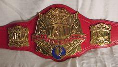 WWW championship belt Japan Pro Wrestling, Wwe Champions, Red Belt, Tabletop Rpg, Professional Wrestling, My Favorite Part, Old School, Awards, Patterns