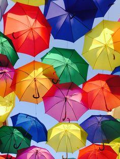 Águeda   Umbrella Live Wallpaper Iphone, Live Wallpapers, Iphone Wallpapers, Rain Umbrella, Storms, Umbrellas, Wall Art, Travel, Tela