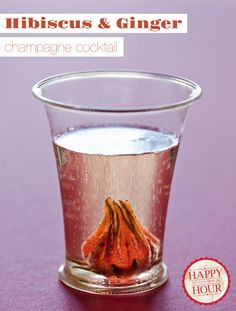 Hibiscus & Ginger Champagne Cocktail. Tasty and pretty!