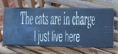 Wood Sign, The Cats Are in Charge, Entry, Pet Sign, Kitchen Wall Art, Rustic, Wall Sign, Funny Quote, Home Quote, Hand Painted, Home Decor