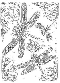 24 Ideas For Doodle Art Patterns Fun Coloring Sheets Insect Coloring Pages, Free Adult Coloring Pages, Fairy Coloring, Flower Coloring Pages, Mandala Coloring Pages, Coloring Book Pages, Printable Coloring Pages, Coloring Sheets, Kids Coloring