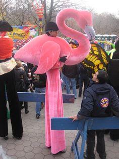 flamingo stilts